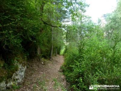 Hoz de Tragavivos; gente para viajar; parque natural alto tajo; viajar sola;visitas cerca de madrid